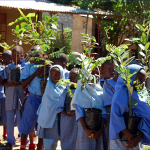 National tree planting day at DGS - 9 April 2013
